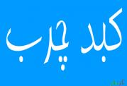 آمار نگران کننده از مبتلایان کبد چرب در ایران