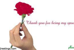 اهمیت قدردانی از شریک زندگی