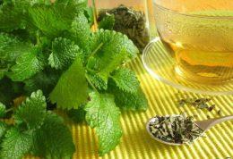 چای سبز برای کم کردن وزن مفید است یا خیر؟