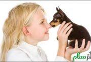 حیوانات خانگی و این هشدارها برای سلامتی