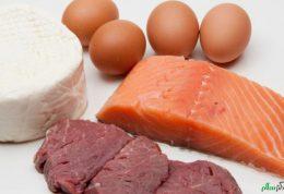 آیا می توان فقط پروتئین گیاهی خورد؟