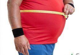 بررسی آثار محیط و وراثت در چاقی