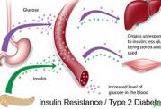 پیشگیری از افزایش قند خون با این مواد غذایی