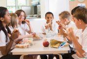 خورد و خوراک در رده سنی نوجوان