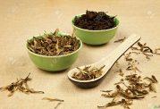 درباره چای سبز و چای سیاه چه می دانید