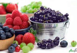 راه حل های تغذیه ای برای مقابله با آلزایمر