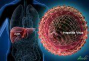 مراقبت از بدن در برابر انواع هپاتیت
