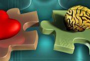 منشا احساسات و رفتارهای احساسی را بشناسید