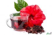 چای ترش و یک دنیا خواص باور نکردنی