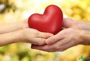 قلب سالم داشتن با در نظر گرفتن این توصیه ها