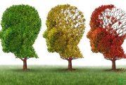 عامل سمی آلزایمر با عامل اختلال چشمی مشترک است