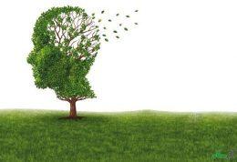 دستیابی محققان به داروی آلزایمر