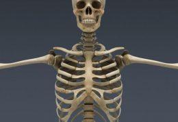 دست چپ، معیاری برای تشخیص سن استخوانی