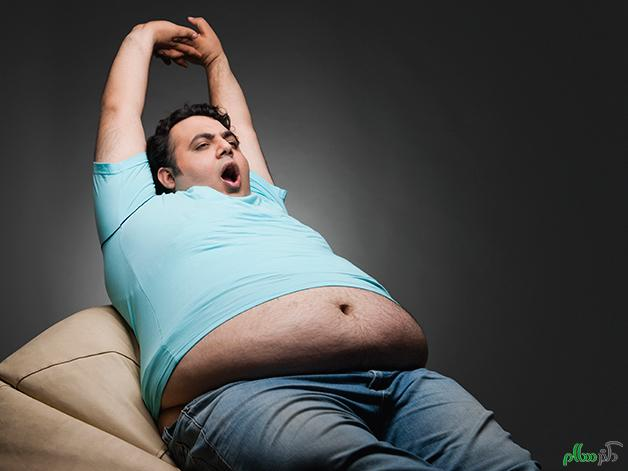 چاق شوید و چاق بمانید تا مغزتان پیر شود و پیر بماند