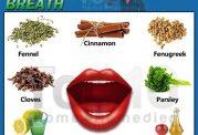 شناخت انواع بوهای مختلف دهان