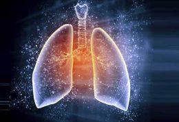 خانه تکانی ریه با آنتی اکسیدان ها