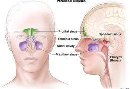 آیا علائم تومور بینی و سینوس را میدانید؟