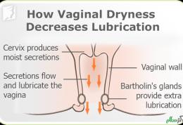 راهکارهای درمانی مناسب برای نرم شدن واژن