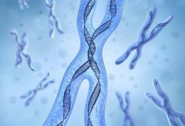 بیماری ژنتیکی پی کی یو در شیرخواران