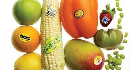 بیماری های ناشی از مواد غذایی تراریخته