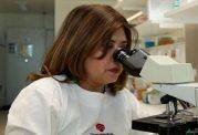 دارویی جدید برای مقابله با انگل مالاریا