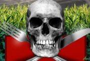ورود گلایفوسیت های خطرناک به سفره ایرانیان!