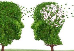 طبق این مراحل به آلزایمر متبلا میشوید