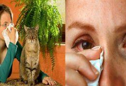 مقابله با انواع آسم و آلرژی