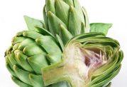مزایا و معایب استفاده از گیاه آرتیشو