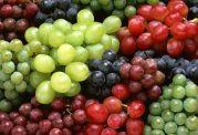 انگور مبارز طبیعی در مقابل سموم بدن