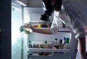 مراقبت از انواع مواد غذایی در برابر فاسد شدن