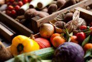 10 خوراکی که بدن ما به آن محتاج است