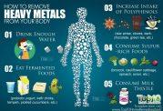 عوارض ناشی از ورود فلزات سنگین به بدن