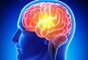 روند آلزایمر را کند و یا متوقف کنید