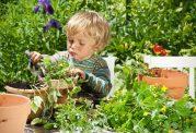 پرورش مهارت های زندگی کودکان با باغبانی