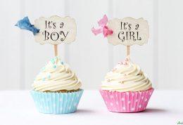 راهنمایی هایی برای پسر شدن جنین