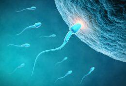 کاهش کیفیت اسپرم با زندگی در محیط آلوده!