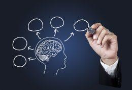 15 نوع مواد غذایی برای تقویت حافظه و جلوگیری از ابتلا به آلزایمر