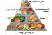 لیست نیازمندیهای تغذیه ای روزانه یک کودک