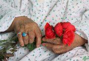 افزایش سلامت روحی و جسمی افراد سالمند