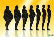 شکم تان را با این 14 راه در 14 روز آب کنید