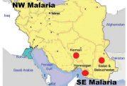 افزایش آمار مبتلایان به مالاریا در کشورمان
