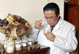 استفاده از محصولات گیاهی در جوامع علاقه مند به طب سنتی