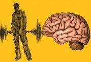 عملیات هرکدام از نیمکره های مغز