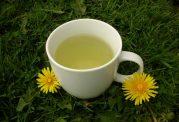 14 فایده چای قاصدک