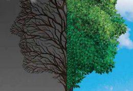 حمایت مادی و معنوی از بیماران افسرده