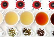 چای مناسب برای خود را با توجه به گروه خونیتان انتخاب کنید