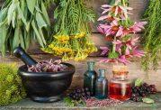 مسکن های گیاهی و فواید درمانی
