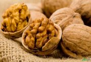 به رشد مغز فرزندتان با این مواد غذایی کمک کنید