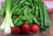 مناسب ترین روش برای طبخ سبزی جات